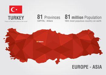トルコ駐在の求人