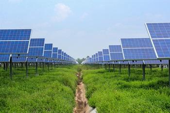 外資エネルギー企業の求人