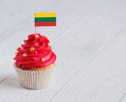 リトアニア大使館の求人情報