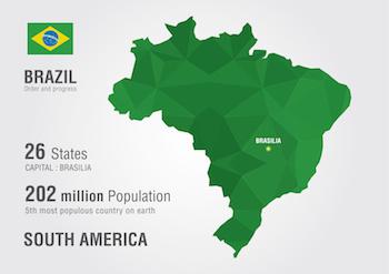 ブラジル駐在の求人