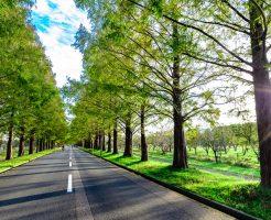 【滋賀県】タクシードライバーの求人