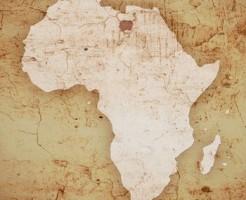 アフリカ関連の要フランス語求人