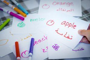 アラビア語を活かす仕事の求人