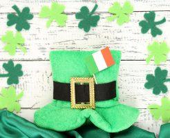 アイルランド大使館の求人