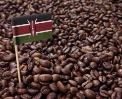 駐日ケニア大使館の求人