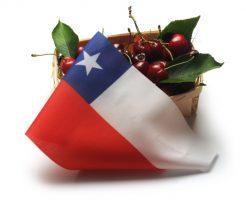 チリ大使館の求人情報