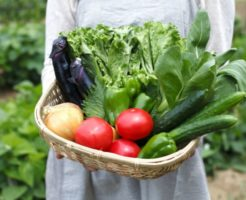 全国農業協同組合連合会(JA全農)の中途採用事情