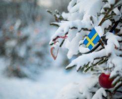スウェーデン大使館の求人情報